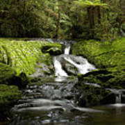 Green Cascade Art Print
