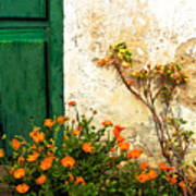 Green Door - Orange Flowers Art Print