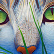 Green Eyes Art Print by Brian  Commerford