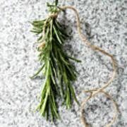 Green Fresh Rosemary On Granite Background Art Print