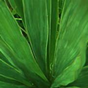 Green Glow Art Print