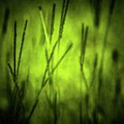 Green Grass Grow Glow Art Print