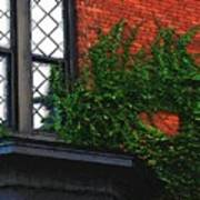 Green Ivy Garnet Brick Art Print