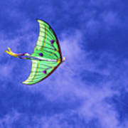 Green Kite Art Print