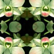 Green Orchid Meeting Art Print