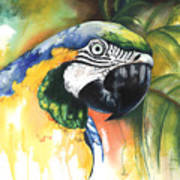 Green Parrot Print by Anthony Burks Sr
