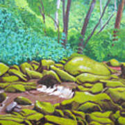 Green Rocks Art Print