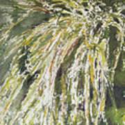 Green Reeds Art Print
