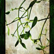 Green Tales  Art Print