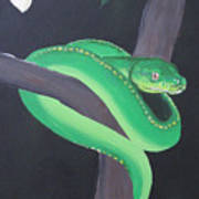 Green Tree Python Art Print