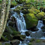 Green Waterfall Art Print