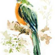 Green Wild Bird Art Print