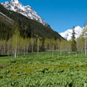 Greens And Blues Of The Maroon Bells Art Print