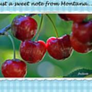 Greeting Card - Cherries #1 Art Print