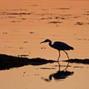 Grey Heron Sunset Art Print