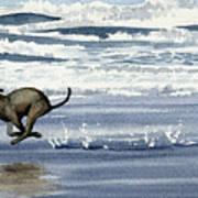 Greyhound At The Beach Art Print