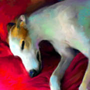 Greyhound Dog Portrait  Art Print