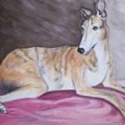 Greyhound Number 2 Art Print