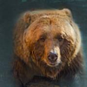 Grizzly Bear Portrait Art Print