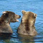 Grizzly Bear Talk Art Print