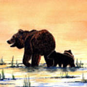 Grizzly Bears Art Print