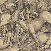 Group Of Seven Horses In Woods Art Print