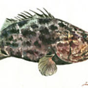 Grouper Fish Art Print