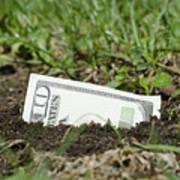Growing Money Art Print by Mats Silvan