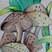 Growing Wild Art Print