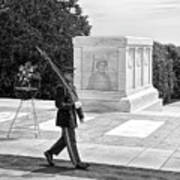 Guarding The Unknown Soldier Art Print