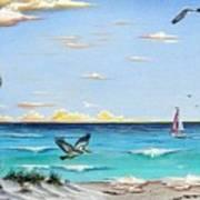 Gulf Beach Pathway Art Print