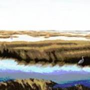 Gulf Coast Florida Marshes I Art Print