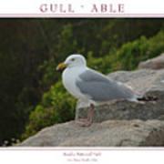 Gull Able Art Print