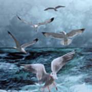 Gulls' Banquet Art Print