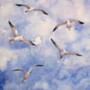 Gulls Is Flight Art Print