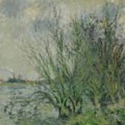 Gustave Loiseau 1865 - 1935 Willows, Edges Oise Or On The Banks Of The Oise Art Print