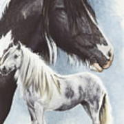 Gypsy Cob  Art Print