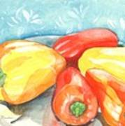 Gypsy Peppers Art Print