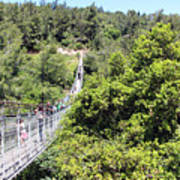 Haifa Hanging Bridge Art Print