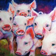 Half Dozen Piglets Art Print