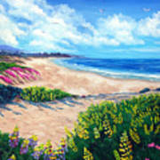 Half Moon Bay In Bloom Art Print