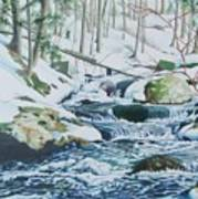 Hamburg Mountain Stream Art Print