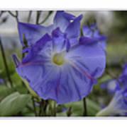 Hameau Bleu Art Print