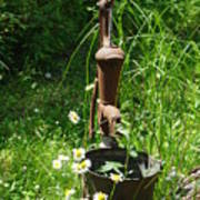 Hand Pump In The Spring Art Print