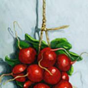 Hanging Around - Radishes Still Life Painting Art Print
