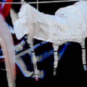 Hanging Garters  Art Print