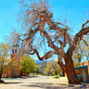 The Hanging Tree In Cerrillos In New Mexico  Art Print