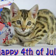 Happy 4th Of July Art Print