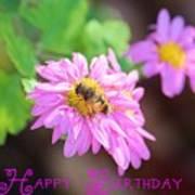 Happy Birthday Daisy Art Print