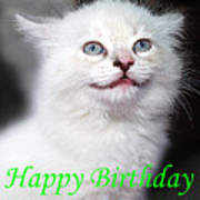 Happy Birthday Kitty Art Print